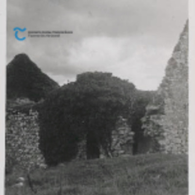 Ballylooby Irish Tourist Association Report