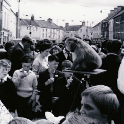Children with monkey at Tipperary Fleadh Cheoil Roscrea in 1964