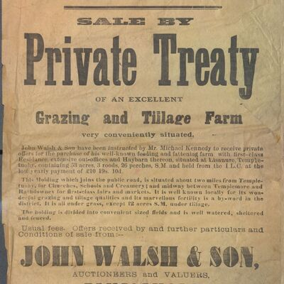 Walsh_and_Son_Auction_Posters_001.jpg
