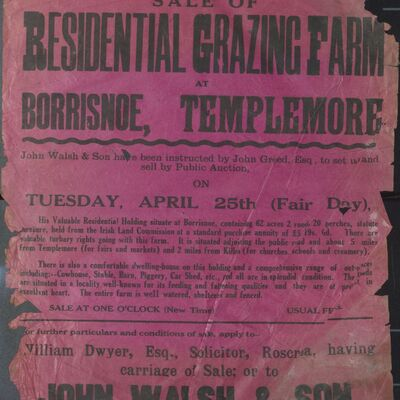 Auction poster for residential grazing farm at Borrisnoe, Templemore, Co. Tipperary