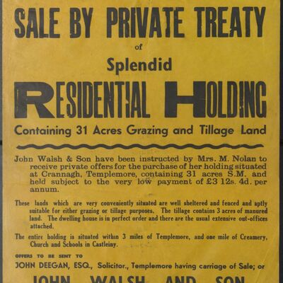 Auction poster for residential holding at Crannagh, Templemore, Co. Tipperary