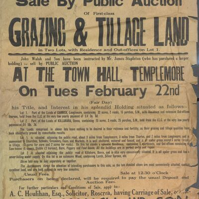 Walsh_and_Son_Auction_Posters_008.jpg