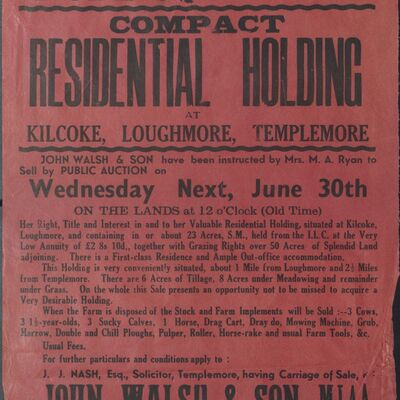 Auction poster for residential holding at Kilcoke, Loughmore, Templemore, Co. Tipperary