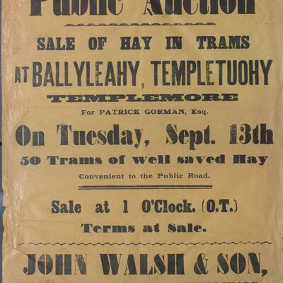 Walsh_and_Son_Auction_Posters_013.jpg