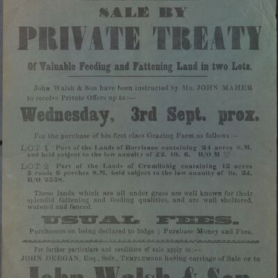 Walsh_and_Son_Auction_Posters_014.jpg