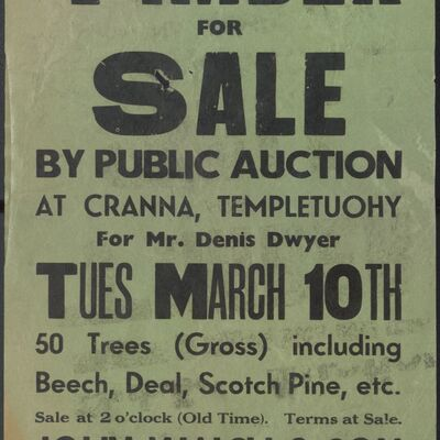 Walsh_and_Son_Auction_Posters_022.jpg