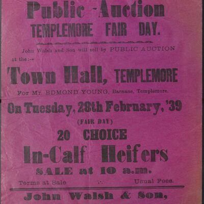 Walsh_and_Son_Auction_Posters_032.jpg