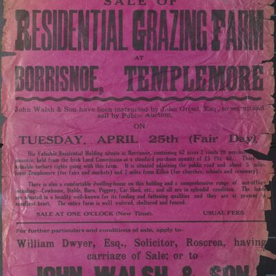 Walsh_and_Son_Auction_Posters_033.jpg