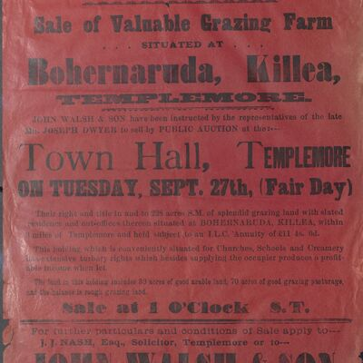 Walsh_and_Son_Auction_Posters_034.jpg