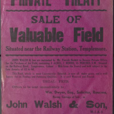Walsh_and_Son_Auction_Posters_038.jpg