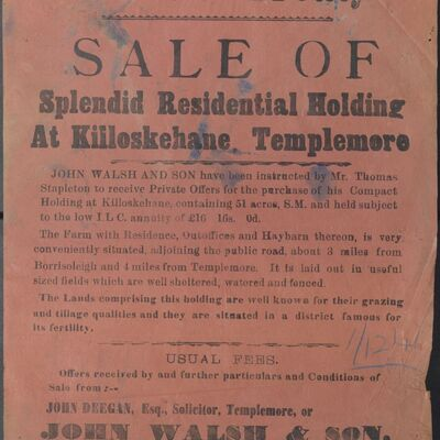 Walsh_and_Son_Auction_Posters_042.jpg