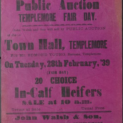 Walsh_and_Son_Auction_Posters_051.jpg